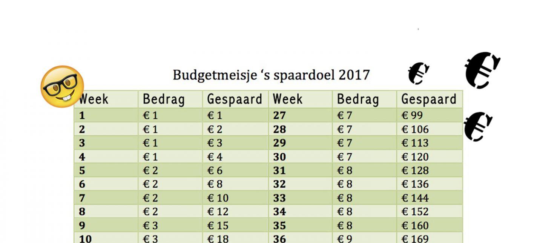 Budgetmeisje's spaarschema voor 2017