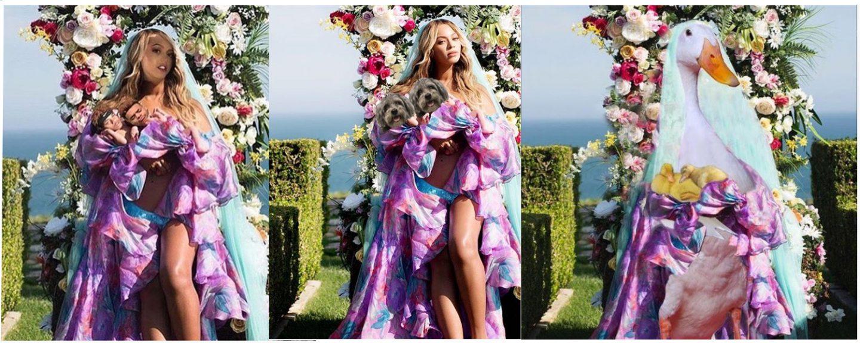 De leukste inhakers op Beyonce's tweelingfoto