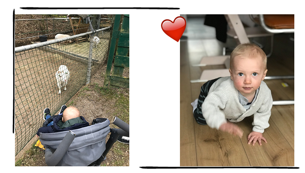 schema baby 1 jaar