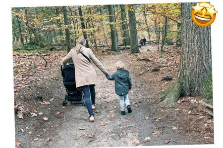 wandelen kinderen buggy's gelderland